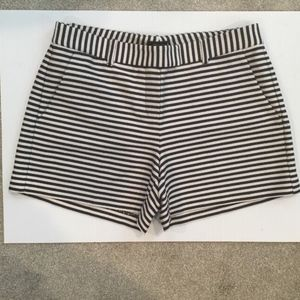 Theory Dressy Casual Shorts